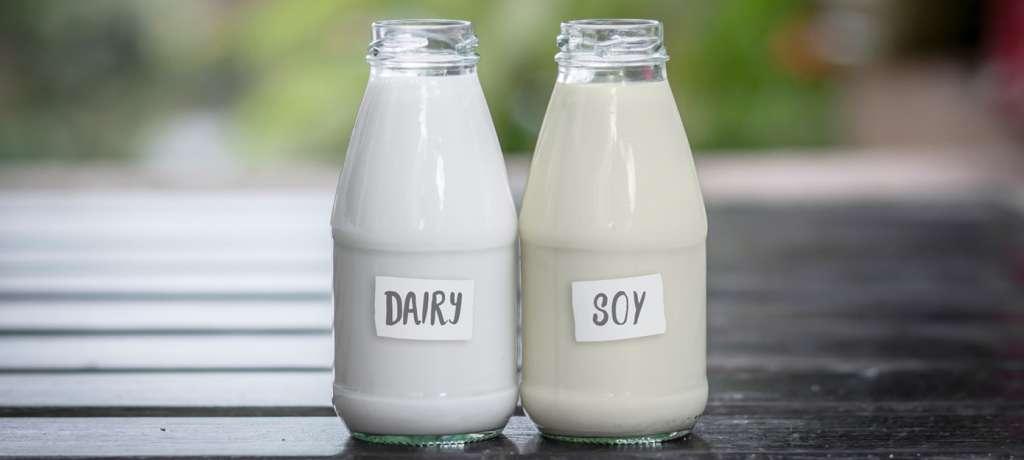 estogenic milk